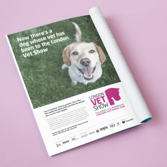 Foundry12 | Our Work | London Vet Show Magazine Advert